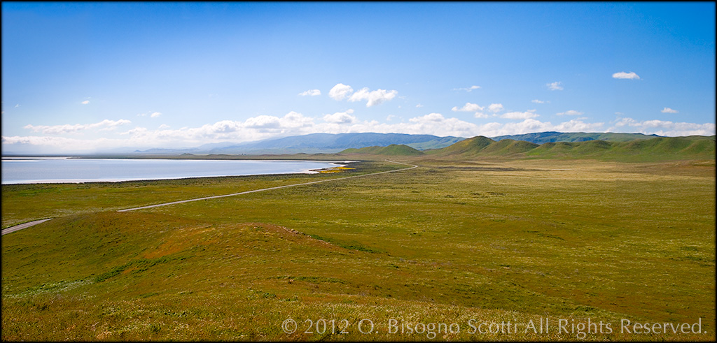 Carrizo Plain - Soda Lake