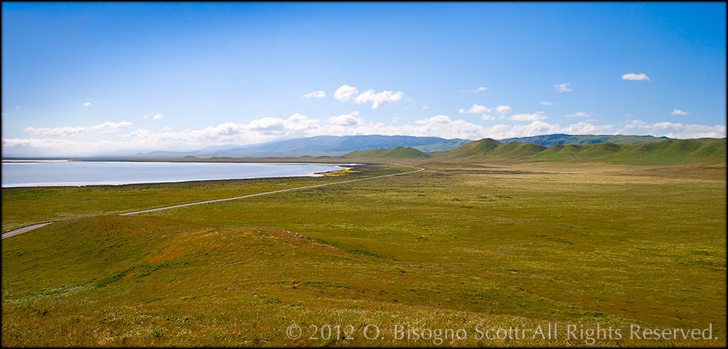 Carrizo Plain - Soda Lake