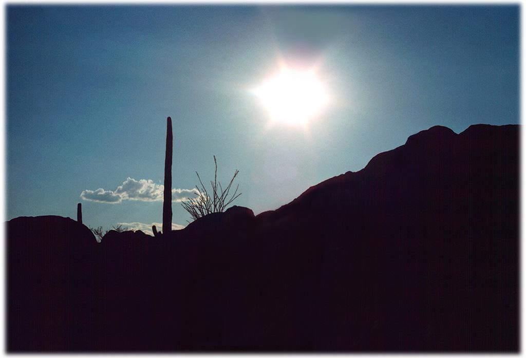Catus, Sun, Cloud