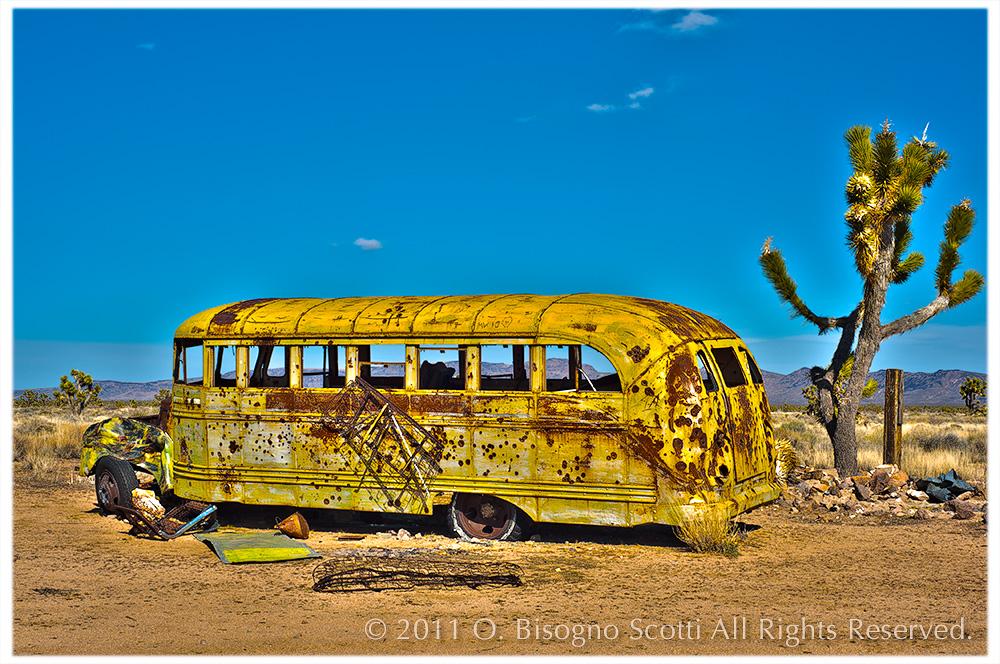 Mojave Bus