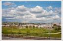 The Cornfield 4/08/2011