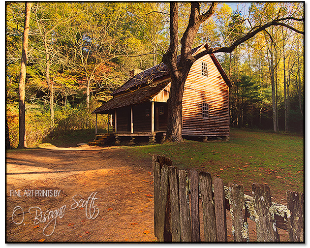 Cabin in Cade's Cove