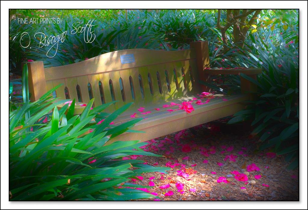 Descanso Garden 5/11/2012