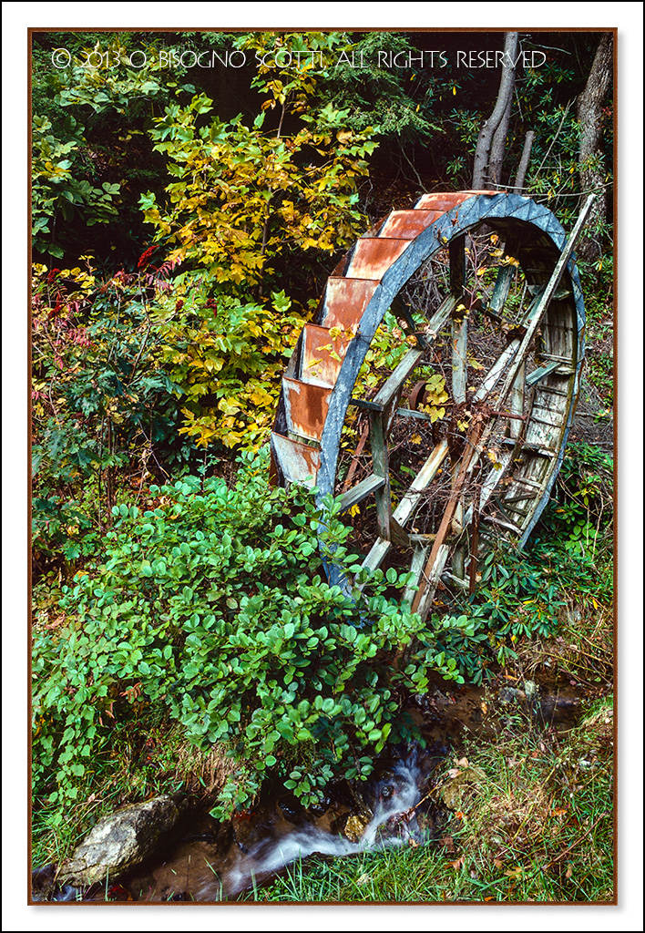 Carolina Waterwheel