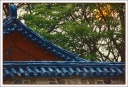 Korean Temple Roof at Sunset