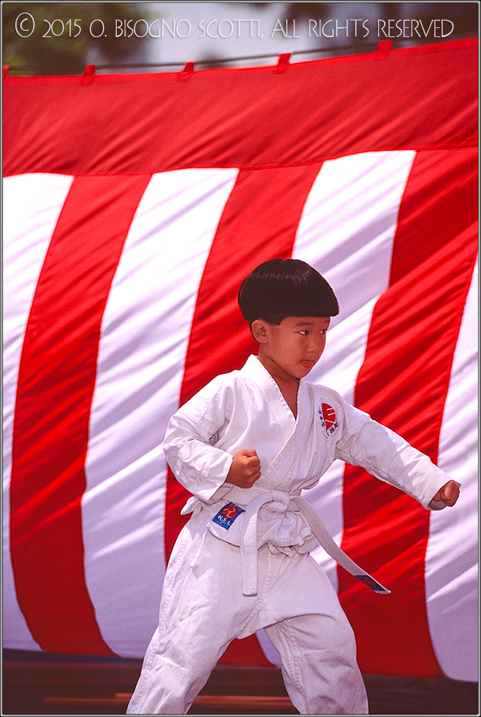 Nisei Karate Boy