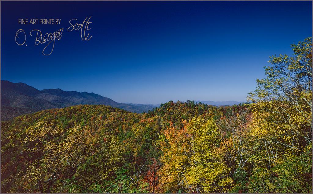 Blue Sky Day, Western N. Carolina