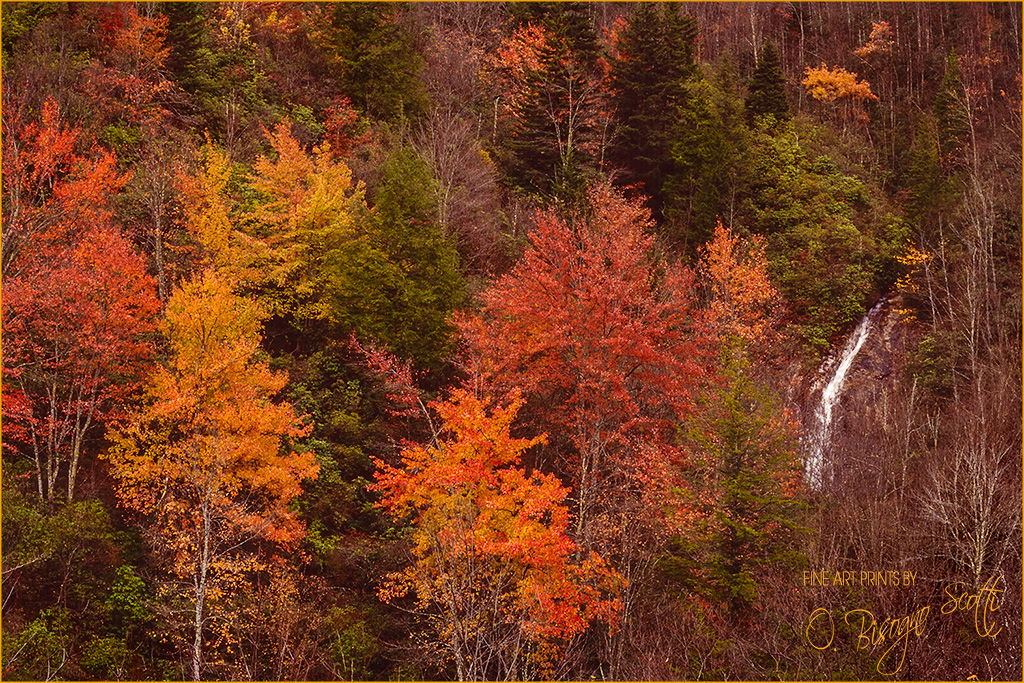 North Carolina Autumn with Falls