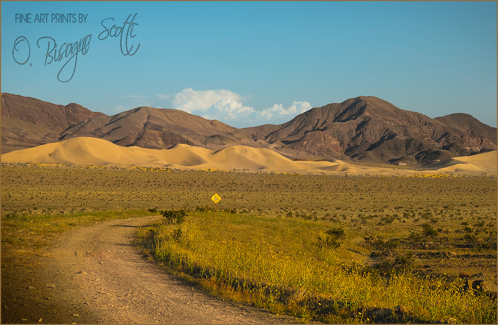Death Valley Dirt Road
