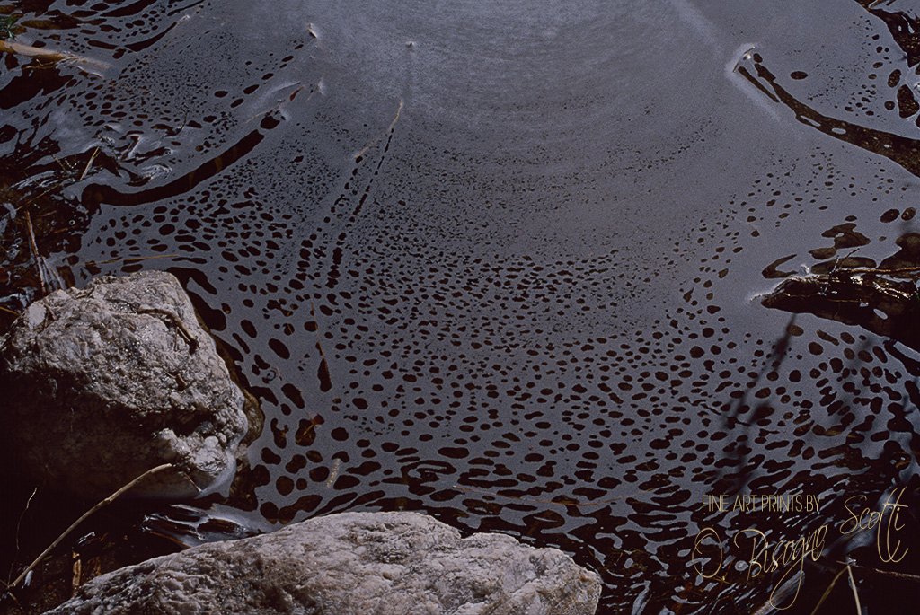 Sonoran Desert Foam Pattern