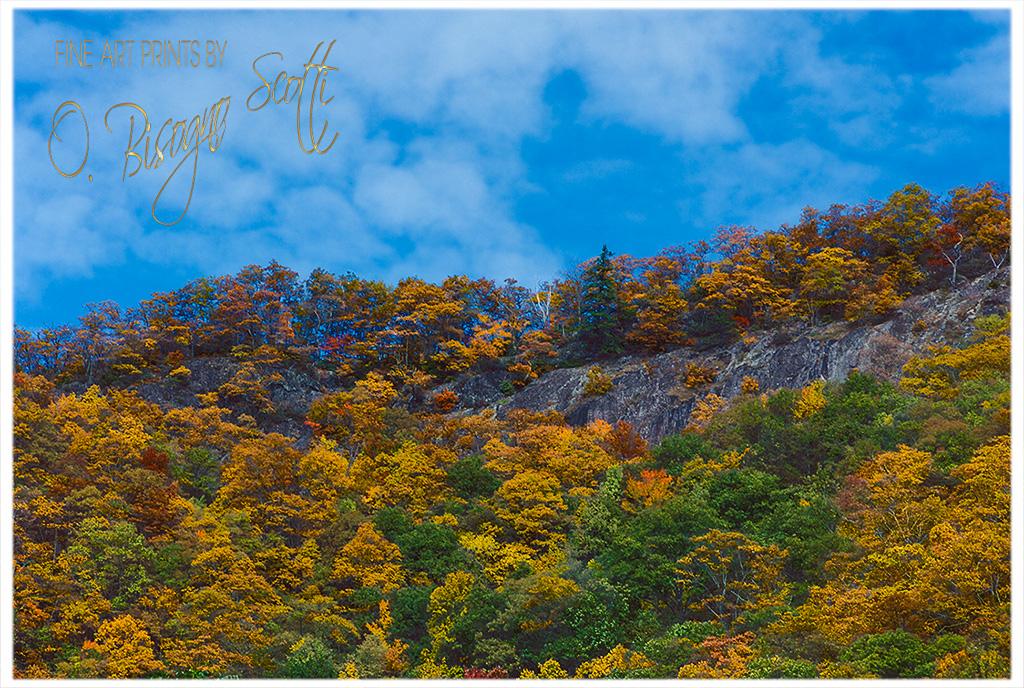 Autumn Ridgeline, North Carolina