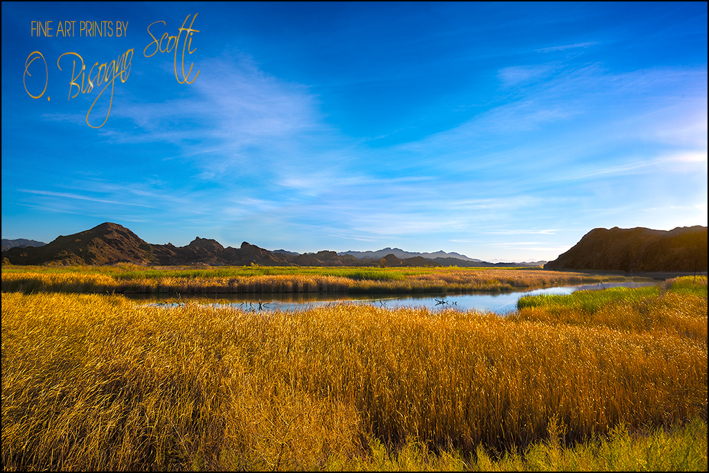 Lower Colorado River at Picacho