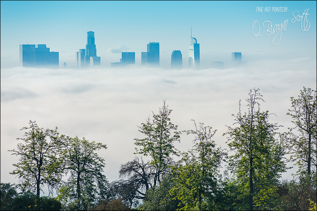 Los Angeles Inversion